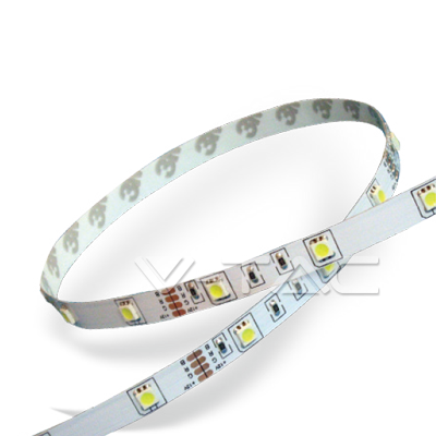 LED strip SMD5050 white Waterproof IP65 - 1 roll 5mt